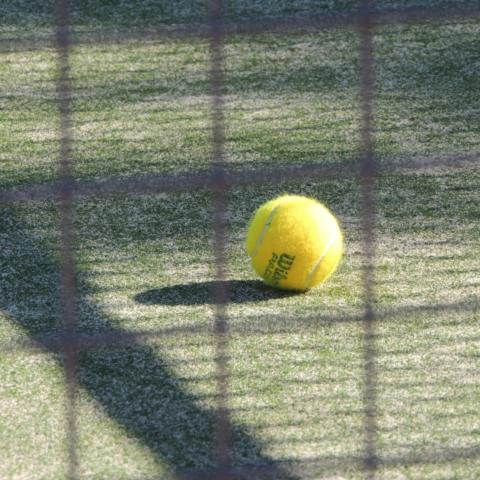 Sport ball tennis paddle jpg